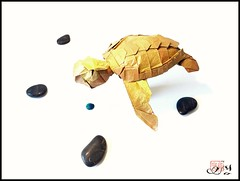 Green turtle by Jang Yong ik (yoan.remy) Tags: origami turtle greenturtle jangyongik tortue paper folding