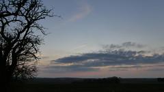 P2480140 (jeanchristophelenglet) Tags: osnyfrance coucherdesoleilcrépuscule sunsettwilight pôrdosolcrepúsculo bleu blue azul rose pink rosa gris grey cinza hiver winter inverno arbre tree arvore