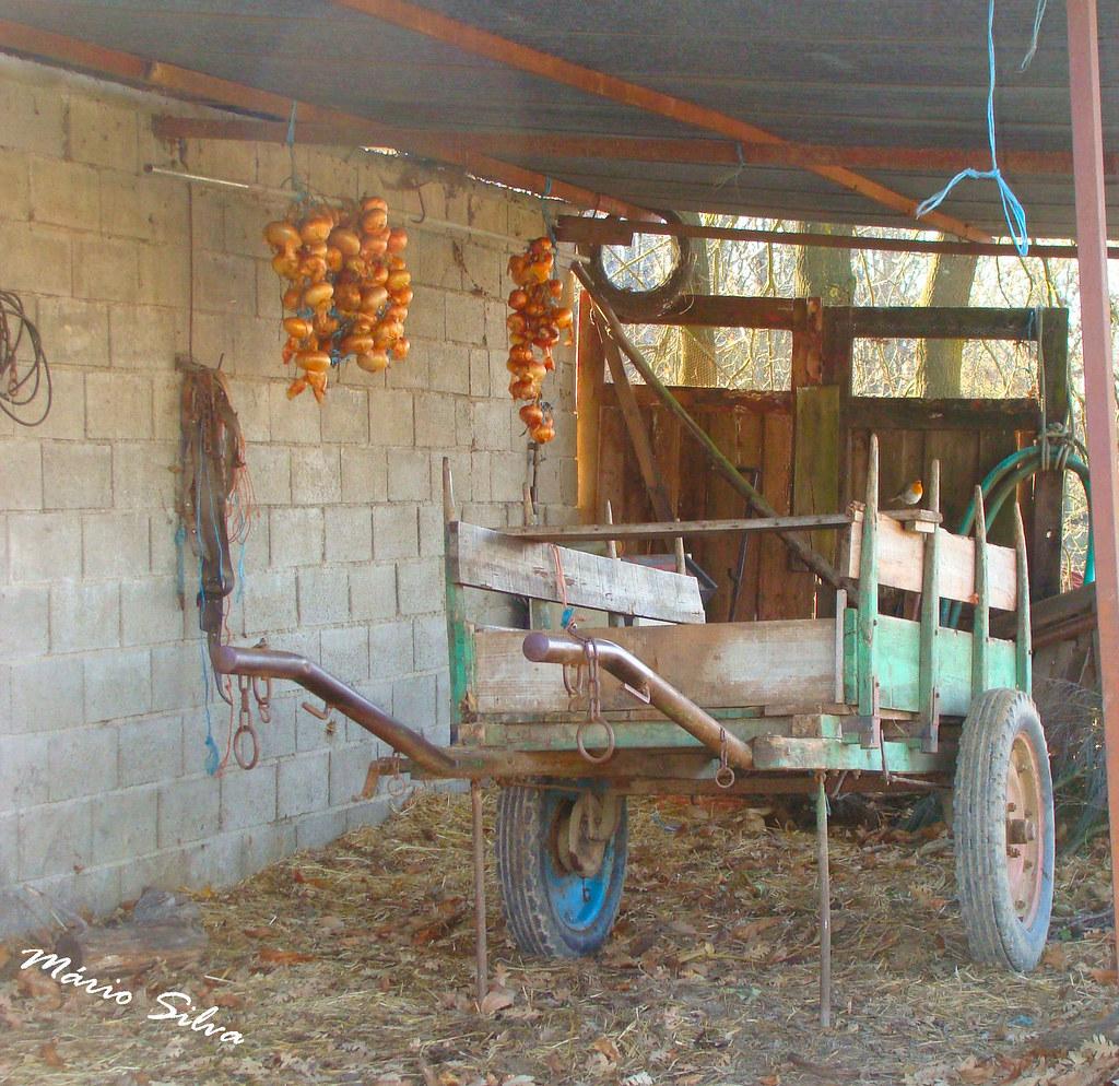 Águas Frias (Chaves) - ... a carroça e as cebolas a secar ...
