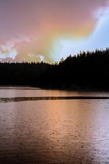 IMG_2566-1 (Andre56154) Tags: schweden sweden sverige wasser water see lake wolke cloud himmel landschaft landscape wald forest regen rain