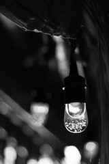 A Light in Dark Times (belleshaw) Tags: blackandwhite livingdesertzooandgardens palmdesert hut light bulb bubbles hanging dark texture detail abstract lens interior