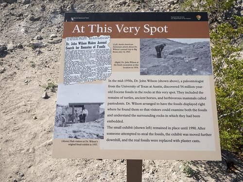 Sign about Paleontologist Dr John Wilson
