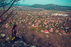 KRIS8122 (Chris.Heart) Tags: erdő buda budapest túra természet forest nature hiking