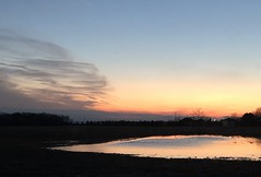 Clouds and sunsets (kirsten.eide) Tags: clouds orange colors outdoors water sunset