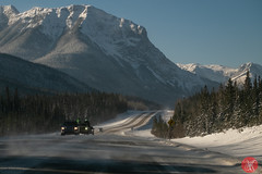 Roadtrip 9 (Kasia Sokulska (KasiaBasic)) Tags: canada alberta rockies travel photography winter jasper np roads landscape