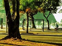 beleza do dia (lucia yunes) Tags: sol verão praiadebotafogo riodejaneiro cor luz cidade mobilephotography mobilephoto streetphotographie streetscene streetphotography streetphoto luciayunes motoz3play