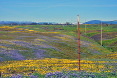 TableTopMountain_21 (DonBantumPhotography.com) Tags: landscapes tablemountain oroville california buttecounty donbantumcom donbantumphotographycom