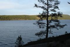 DSC05088 (MSchmitze87) Tags: schweden sweden dalsland kanu canoeing see lake