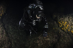 Night Diving (Active Andalus) Tags: activeandalus inspireandalus outdooractivities scubadiving padidiving andalucia granada malaga costatropical costadelsol marinadeleste