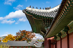 Detail of Changdeokgung Palace (Seoul, South Korea. Gustavo Thomas © 2018) (Gustavo Thomas) Tags: changdeokgung palace castle seoul korea southkorea korean traditional design beauty architecture history asia asian travel voyager voyage toursim site