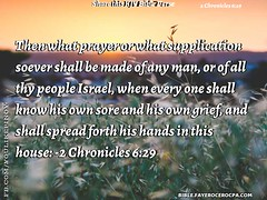 2 Chronicles 6:29 (jhungalang) Tags: 2 chronicles 629