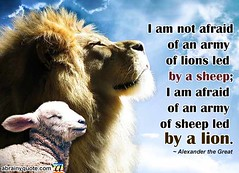 Alexander the Great Quotes on an Army of Lions (abrainyquote) Tags: alexanderthegreat brave army armyquotes