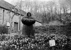 Monk (graemes83) Tags: pentax ilford film 135 35mm black white