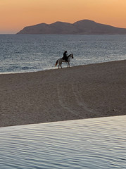 Caballero: Texting home before riding off into the sunset (remiklitsch) Tags: caballero sunset sky mountain sea sand pool evening mexico cabo springbreak march 2019 remiklitsch iphone horse solitary beach seaofcortez portrait