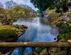 Garden View (dltaylorjr) Tags: worldtrekker japanesegarden gardens zen samsungphotography cityscape outdoorphotography ponds vacation asianart eastasia colorful greenscene