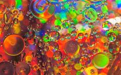 Circles, lots of them! (Bhuvan N) Tags: abstract abstractphotography macro macrophotography circles oilandwater shapes colors colours colourful red orange green vivid burstofcolors nikond60 nikon tamron tamron18200mm blue longexposure glass