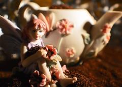 Fairy Tea (Earth Guardian Angel) Tags: fairytea nikon nikond3200 fairy tea macromondays brew 122