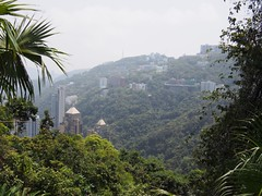 (procrast8) Tags: hong kong island china victoria peak mount austin