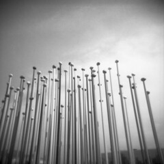 Milano 2018 Dicembre014 (Valt3r Rav3ra - DEVOted!) Tags: holga holgacfn lomo lomography toycamera plasticcamera milano medioformato mediumformat film ilford ilfordfp4 valt3r valterravera visioniurbane urbanvisions bw biancoenero blackandwhite