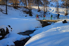 il Ponte sul Chrumbach (Roveclimb) Tags: mountain montagna alps alpi vallese valais svizzera suisse sempione simplon ossola scialpinismo skitouring winter inverno snow schnee neve galehorn simplonpass engiloch brucke bridge ponte