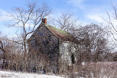 House in the Country (gabi-h) Tags: abandoned house architecture winter trees branches gabih princeedwardcounty sky blue white oncewashome