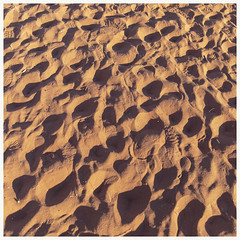 Red Centre . Australia (:: Blende 22 ::) Tags: tree baum australia australien nothernterritory outback olgas katatjuta uluru ayersrock basewalk redrocks redcentre rocks bluesky canoneos5dmarkiv ef2470mmf28liiusm