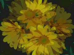 Happy Slider Sunday (novice09) Tags: slidersunday flowers yellow ipiccy watercoloreffect