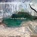 Cagnano Varano (FG), 2009, Grotta di San Michele, la