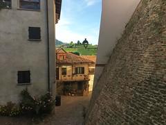 Barolo (Langhe) - Angle (Alessia.Malachiti) Tags: langhe piemonte piedmont wine vino barolo roddino cuneo