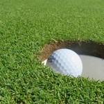 Backyard Artificial Grass Putting Green in Gloucestershire #Golf... thumbnail