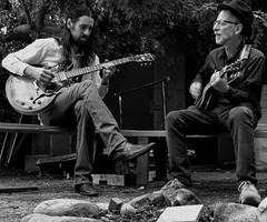 franklin blues band-16 (krosencreations) Tags: blues csun franklinbluesband jerryrosen johnsikora kateannerosen band guitar guitarist photography photoshoot