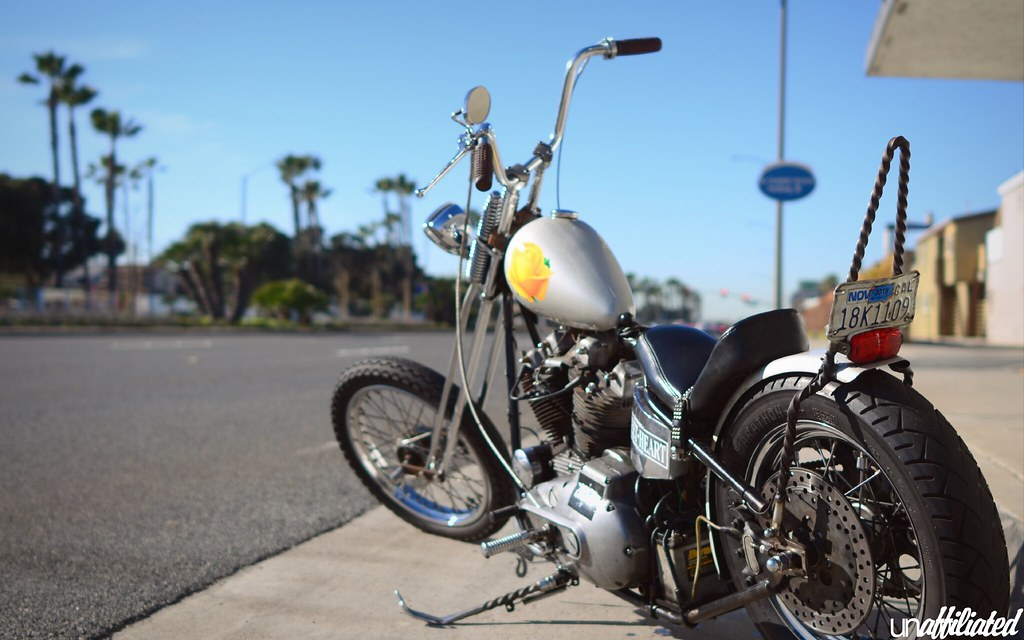 The World's Best Photos of ironhead - Flickr Hive Mind