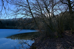 Immerather Maar (franzmarkus) Tags: eifel eis winter wald kratersee maar rheinlandpfalz deutschland germany nikon z6 fx forest natur nikkor 1835mm