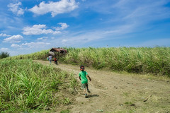 Wait ! (Beegee49) Tags: countryside children boy running landscape sony a6000 happy planet luminar conception philippines asia
