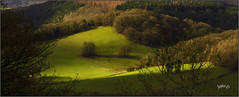 34 Sheep.. (Picture post.) Tags: landscape nature green sheep shadows trees hills fields paysage arbre