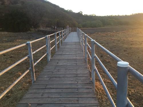 2019- Palo Verde