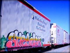 (timetomakethepasta) Tags: strange koc sfb freight train graffiti art cryo cryotrans cryx reefer