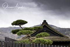 Japan19Ak_IO_0781-1 (oalard) Tags: japan japon canon 1dmkiv akone paysage nuage cloud