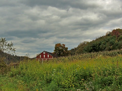 Peek-A-Barn (George Neat) Tags: clouds fields trees barn buildings structures somerset county pa pennsylvania laurelhighlands scenic scenery landscapes outside georgeneat patriotportraits neatroadtrips