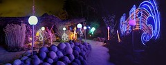 Dooley Music Path (JoelDeluxe) Tags: rol riveroflights abq biopark nm december 2018 albuquerque biological park pnm light display colors lights sculptures fantasy newmexico hdr joeldeluxe