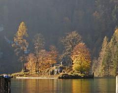 Golden Island (mikecogh) Tags: schoenauamkonigssee golden island autumn fall pretty lake trees soft