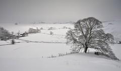 A Different Perspective (Andrew Mowbray) Tags: derbyshire upperdove whitepeak walkinginderbyshire peakdistrictnationalpark peakdistrict chromehill limestone reefknoll hollinsclough snow
