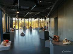 Fantaisies végétales : céramiques (bpmm) Tags: colysée lambersart nord art expo exposition séverinecadier céramique