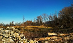 Bestes Baumaterial gegen Erosion (einfache Fotomomente) Tags: panasonic dmcg81 ƒ100 130 mm 1500 100 baumaterial erosion stein holz bäume