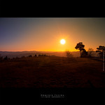 Alone | Beaujolais (France) thumbnail