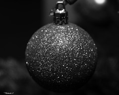 Black & White Christmas Eve Ornament (that_damn_duck) Tags: blackwhite monochrome nikon christmasornament christmas decoration ornament glitter bw blackandwhite