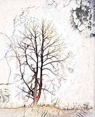 The Tree (Mulewings~) Tags: tree experiment layers brushes masks painting