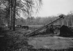 Boerderij Groot Koestapel met revueflex-sd-1 - 023 (R. van Stormbroek) Tags: boerderij groot koestapel met revueflexsd1