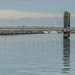IMAGES OF DUN LAOGHAIRE HARBOUR [CAPTURED USING A BATIS 135mm LENS]-147119