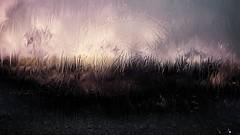 mani-1411 (Pierre-Plante) Tags: art digital abstract manipulation